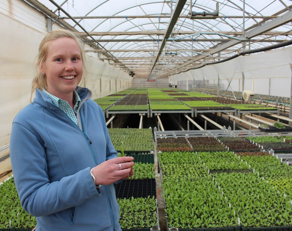 Annie works in seed production and commercial sales trials for Rijk Zwaan Australia, at the Musk head office.