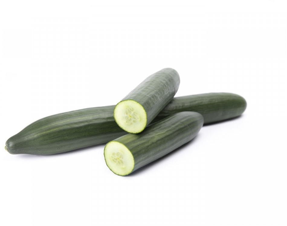 Blueleaf® cucumber, Insula RZ, variety offers greater insurance for growers