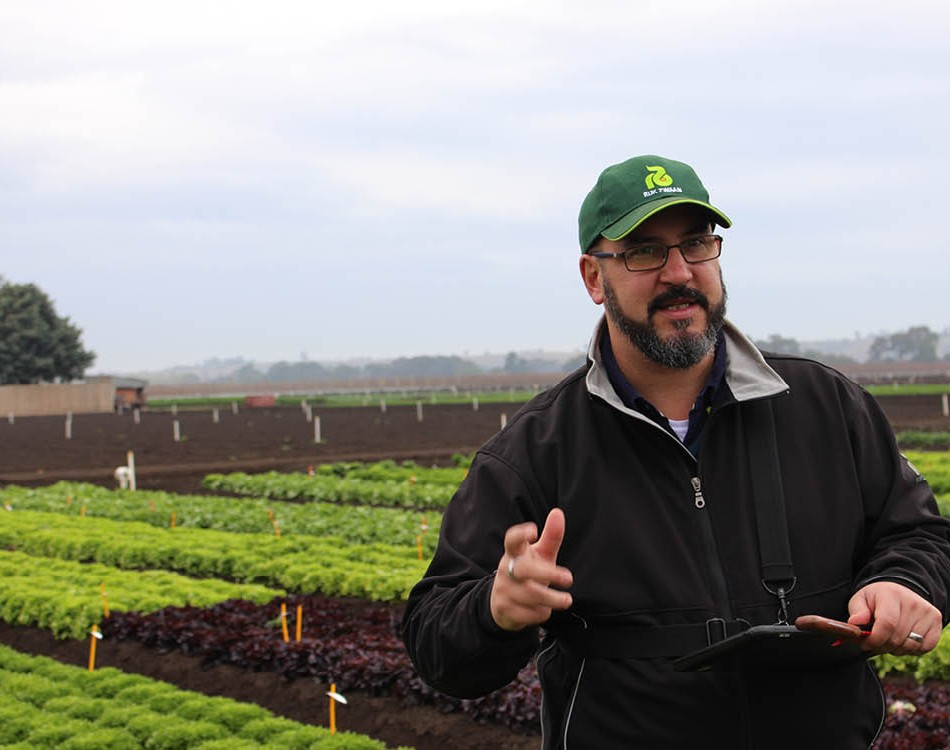 James Bertram of Rijk Zwaan Australia at the Bacchus Marsh lettuce trial