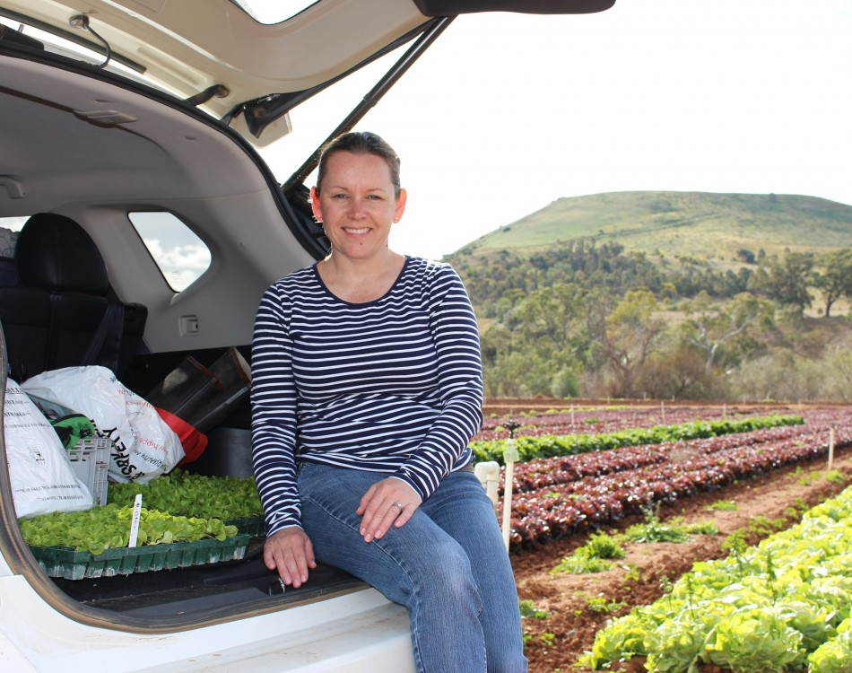 Stephanie Knight is Rijk Zwaan's area representative for Tasmania and Victoria, and the Brassica Specialist for Australia.